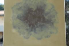 risultato-ceramica-organica-2
