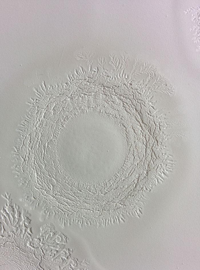 organic-ceramic-4