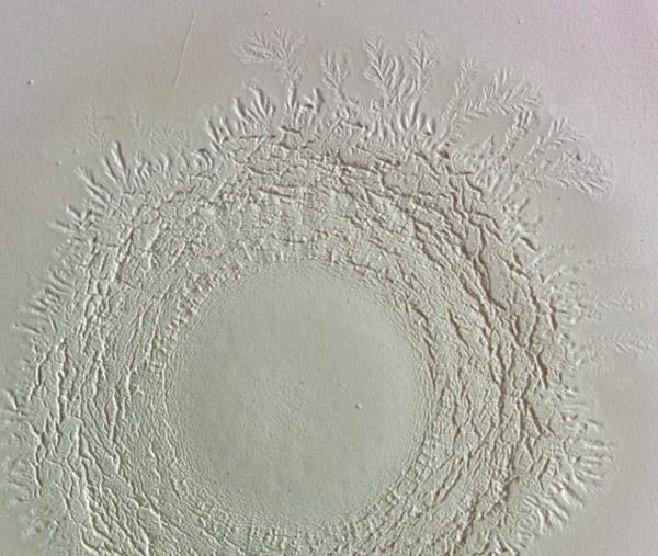 organic ceramic